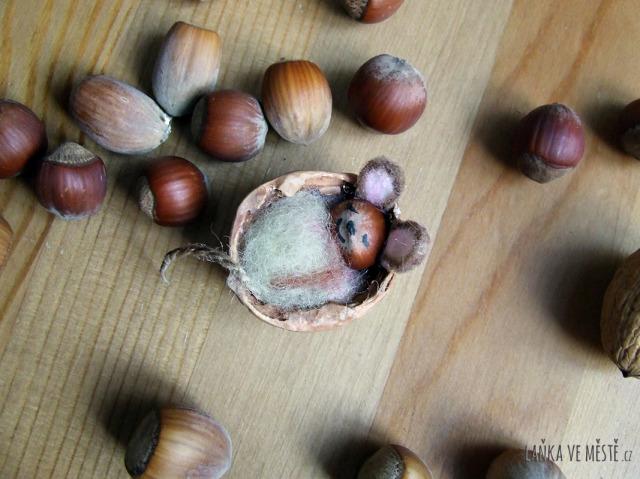 Myška spící ve skořápce z vlašského ořechu.