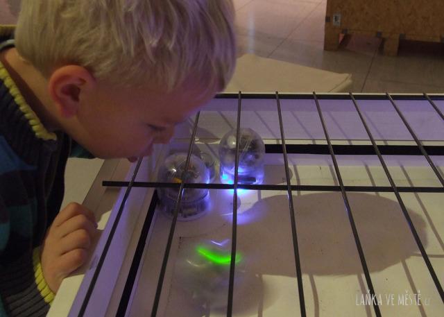 Meditativní společenská hra His Master's Voice na výstavě No Pain No Game – robotické kuličky jsou uváděny do pohybu zpěvem