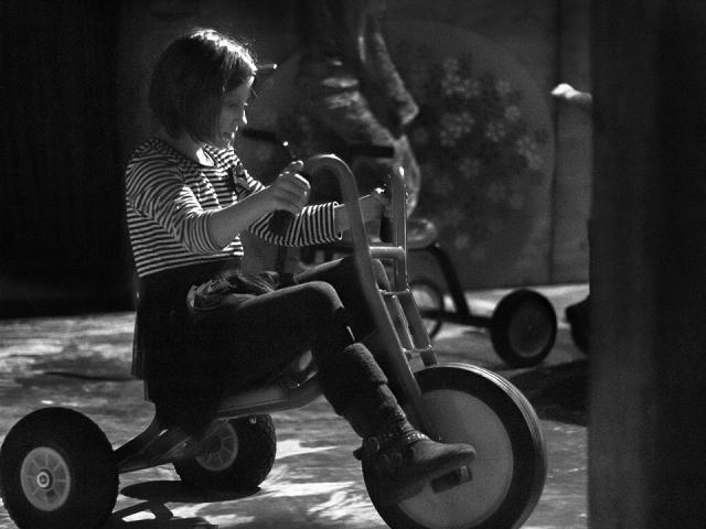 Jak se na takové kocouří tříkolce jezdí? Výstava Zahrada 2 na motivy stejnojmenné knihy Jiřího Trnky